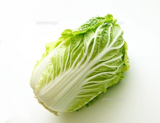 白菜[10450000094]| 写真素材・ストックフォト・画像・イラスト ...